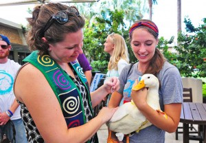Eckerd College is one of many pet-friendly college campuses.