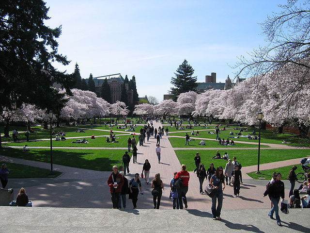 University of Washington-Seattle - Best Large Colleges