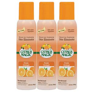 """must haves"" for surviving college -- citrus magic air freshener"