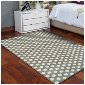 """must-haves"" for surviving college -- superior dot collection rug"