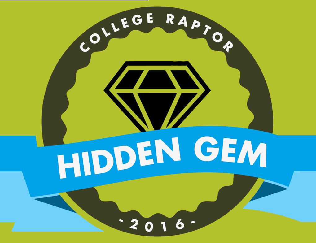1_hiddden_gem_2016