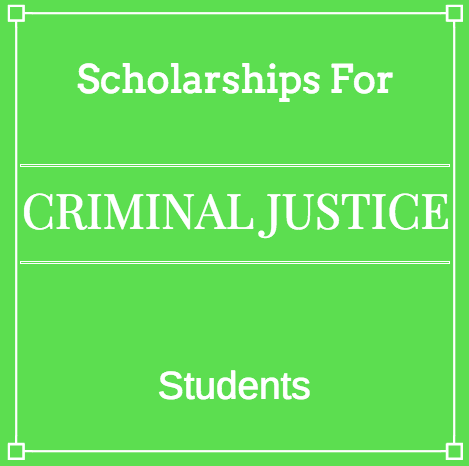Criminal justice case study essays