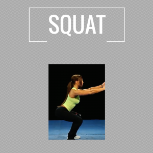 Exercises - squat