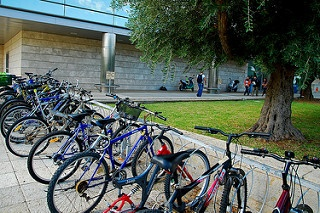 Bikes are just one possible alternative to having a car on campus