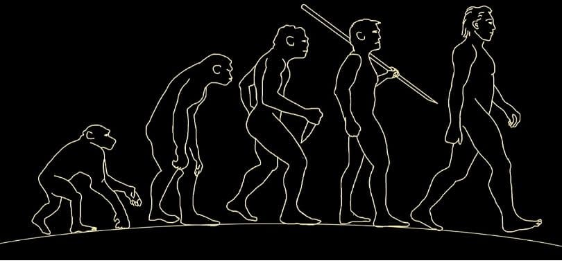 An illustration of the evolution of man.