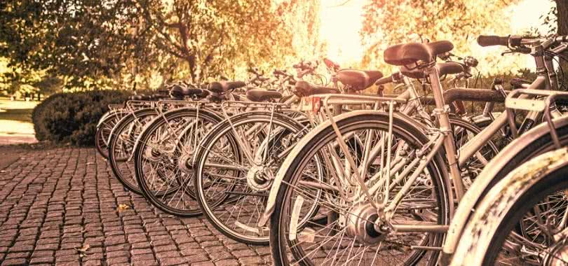 Bikes on a college campus
