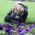 Student taking pictures of violet flowers on the ground.