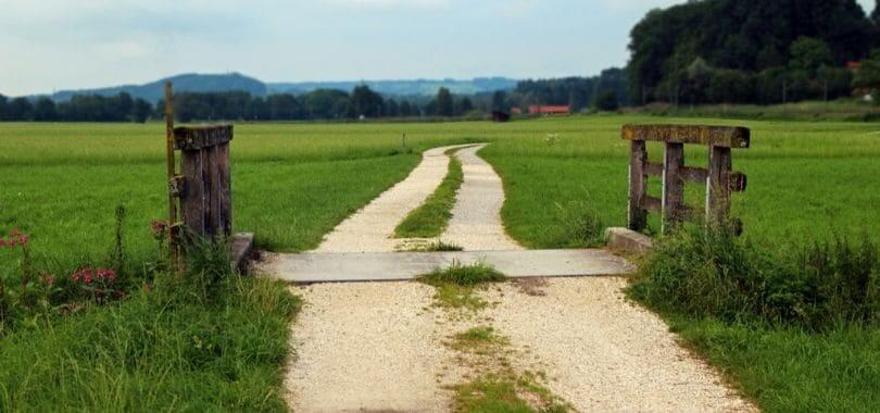 A rural pathway in the middle of a field.