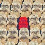 A red gummy bear among clear gummy bears.
