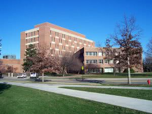 Top 25 Best Colleges in the Midwest - Michigan State University