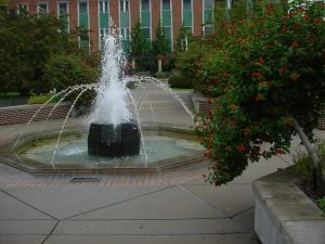 Michigan State University - Best Colleges in the Midwest