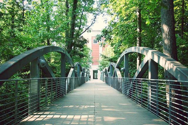A path towards a bridge.