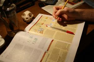 Student studying textbook - have you looked at a list of ap classes?