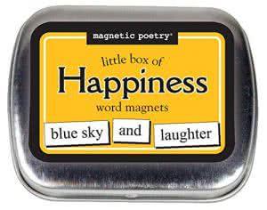 Magnetic Poetry fridge magnet poetry