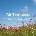 Flower field with text: Air fresheners for your dorm room
