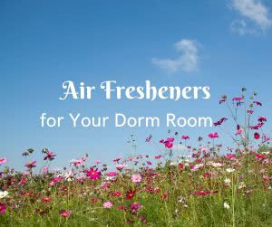 "Field of pink flowers and blue sky with overlay text that says ""Air Fresheners for your dorm room."""