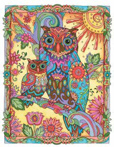 Owls adult coloring books