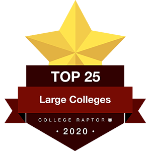 Best Large Colleges Badges