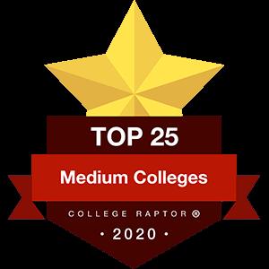 Best Medium Colleges Badge