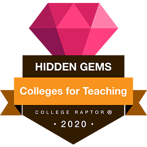 Hidden gems for teaching - colleges with teaching programs
